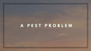 A Pest Problem